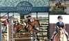 Stony Glen Stables - Pilot Point-Aubrey: $59 for Two Semi-Private English Horseback Riding Lessons at Stony Glen Stables ($120 Value)
