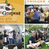 Half Off Great Grapes Wine Festival Tickets