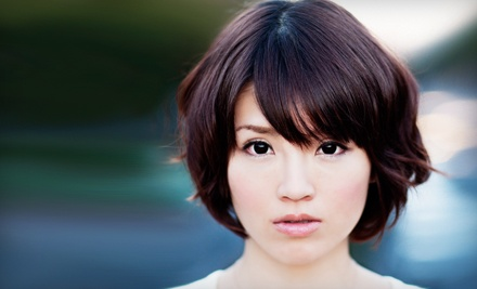 Haircut and Style with a Top Stylist (Up to a $53 value) - dearinger Hair Salon in La Jolla