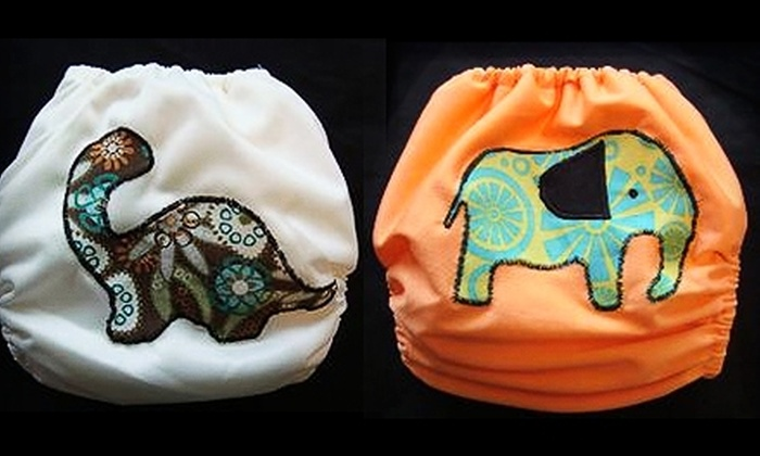 Cloth Baby: $10 for $20 Worth of Cloth Diapers and Accessories from Cloth Baby