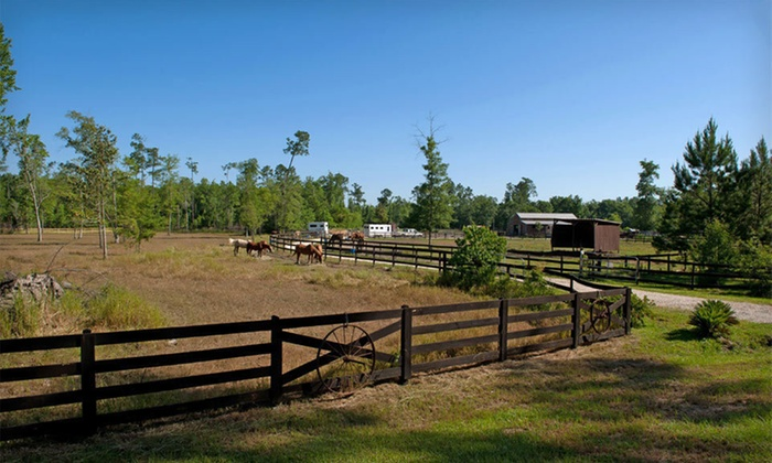 Splendor Farms - 2: One- or Two-Night Stay with Breakfast, Fishing, and Horseback Trail Riding at Splendor Farms in Bush, LA
