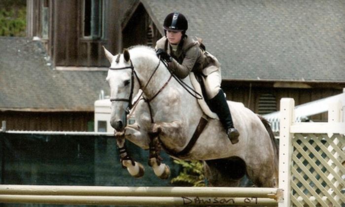Hannink Equine Center - Golden Estate Acres: One or Two 60-Minute or Four 90-Minute Beginner Horseback-Riding Lessons at Hannink Equine Center (Up to 51% Off)