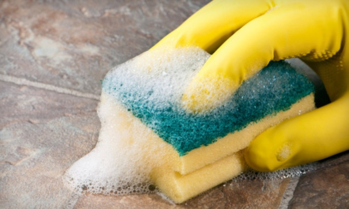 2Women Cleaning Services - 2Women Cleaning Services: One, Two, or Four Housecleaning Sessions from 2Women Cleaning Services (Up to 66% Off)