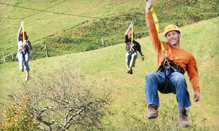 Scream Time Zipline - 3: $44 for a Guided Zip-Line Tour at Scream Time Zipline in Zionville ($89 Value)
