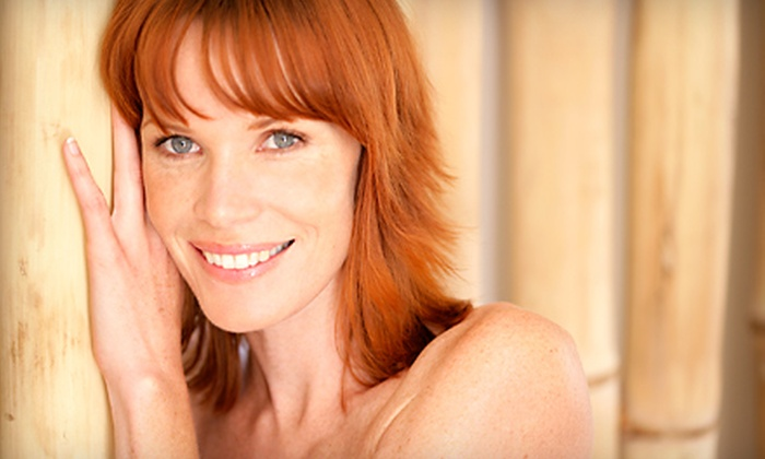 Elle Hair & Skin Spa - North Raleigh: Haircut with Style or Partial-Highlights Package with a Haircut and Style at Elle Hair & Skin Spa (Up 78% Off)