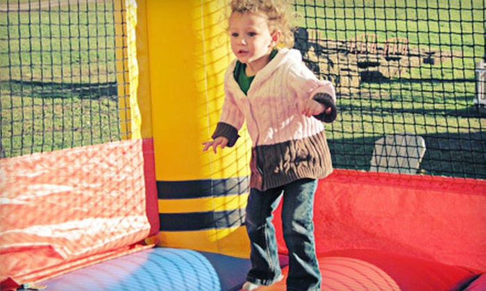 BubKat Bounce! - Saratoga: Four-Hour Rental of a Small or Large Inflatable Bounce Castle from BubKat Bounce! (Up to 56% Off)