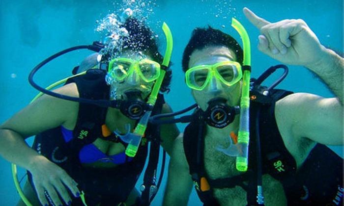 Squalo Divers - North Miami Beach: $199 for a PADI Open-Water Scuba-Certification Course at Squalo Divers in North Miami Beach ($450 Value)