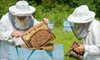 Round Rock Honey's - Copper Canyon: $39 for Intro to Beekeeping Class at Round Rock Honey in Copper Canyon ($125 Value)