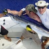 53% Off Four-Hour Sport-Fishing Trip