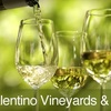 60% Off Wine Tour & Tasting in Long Grove