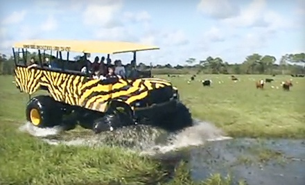 Showcase of Citrus: Child's Ticket to the Eco-Tour & Swamp Buggy Ride  - Showcase of Citrus in Clermont