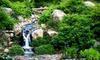 Quarryhill Botanical Garden - Glen Ellen: $29 for a One-Year Family Membership to Quarryhill Botanical Garden in Glen Ellen ($75 Value)