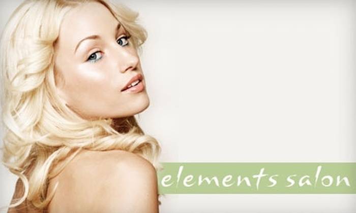 Elements Salon - Neartown/ Montrose: $40 for a Deep Conditioning Hair and Scalp Treatment, Shampoo, and Blow-Dry from Elements Salon ($100 Value)