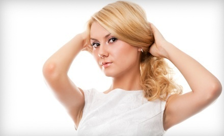 Women's Haircut with a Shampoo and Heat Styling - Stylist Brandi Evans at The Gallery in Lubbock