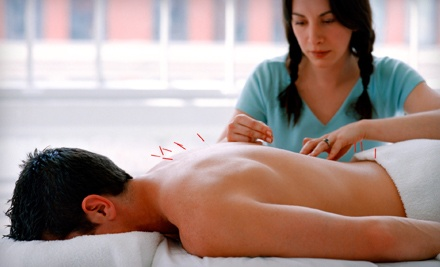Consultation and Acupuncture Treatment (a $90 value) - Minal Patel L.Ac. in Fremont