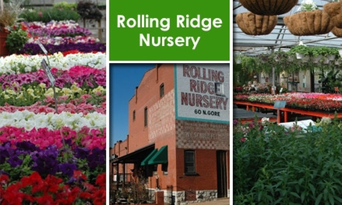 Rolling Ridge Nursery - Webster Groves: $15 for $40 Worth of Plants and Garden Supplies from Rolling Ridge Nursery