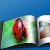 $10 for Custom Photo Book from A&I Books