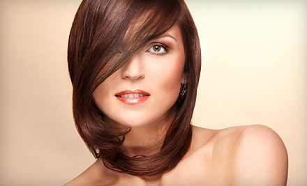 Haircut and Style (a $40 value)  - Leena's Hair Salon in St. Catharines