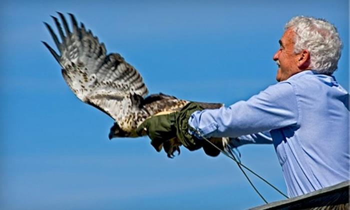 New Hampshire Audubon - Concord: One-Year Individual or Family Membership to New Hampshire Audubon