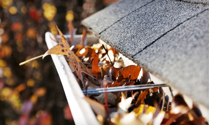 Swiss & Sennhauser - Wychwood: Window- and Gutter-Cleaning Package or Gutter Cleaning with System Flush from Swiss & Sennhauser (Up to 57% Off)