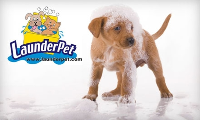 LaunderPet - Multiple Locations: Pet Bathing, Grooming, and Supplies at LaunderPet. Choose from Two Options.