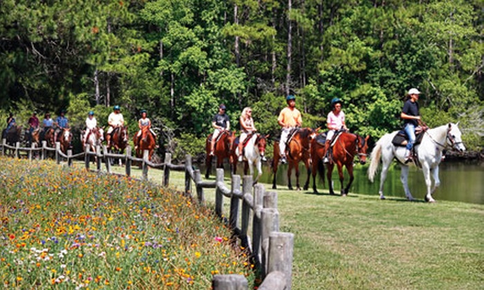 Lawton Stables - Hilton Head Island: $55 for a Horseback Trail-Ride Adventure for Two at Lawton Stables ($110 Value)