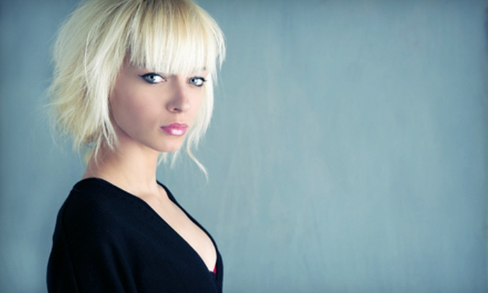 Salon de Trois - Knoxville: Haircut and Style with Option of Partial Highlights at Salon de Trois (Up to 53% Off)
