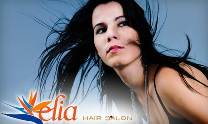 Elia Hair Salon - Upper West Side: $30 for $65 Worth of Services at Elia Hair Salon