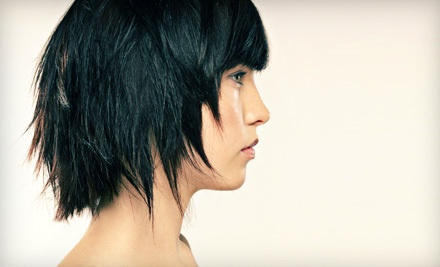 Women's Cut, Shampoo, and Blow-Dry (a $60 value) - Tress Salon in Kitchener