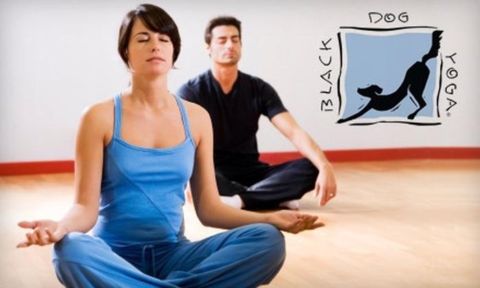 Black Dog Yoga - Sherman Oaks: $29 for 10 Yoga Classes at Black Dog Yoga in Sherman Oaks ($140 Value)