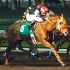57% Off Horse-Race Package with Betting for Two in Los Alamitos