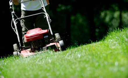 Tree Frog Lawn and Landscaping: Lawn-Mowing Service for Areas of Up to an Acre  - Tree Frog Lawn and Landscaping in