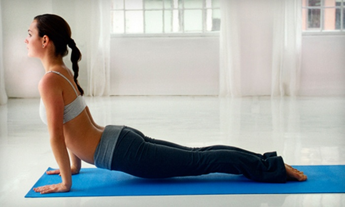 The Ayurvedic Path - Herndon: $39 for 30 Days of Unlimited Yoga Classes at The Ayurvedic Path in Herndon ($160 Value)