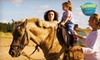 Foxcroft Farm - Chino: One or Four Group Horseback-Riding Lessons at Foxcroft Farm in Chino (Up to 54% Off)
