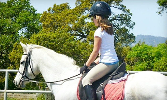 BellaMar Training Stables and Riding School - Interlaken: One, Three, or Five Horseback-Riding Lessons at BellaMar Training Stables and Riding School in Watsonville (Up to 64% Off)