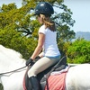 Up to 64% Off Horseback-Riding Lessons in Watsonville