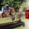 Up to 56% Off Equestrian Lessons in Sandown