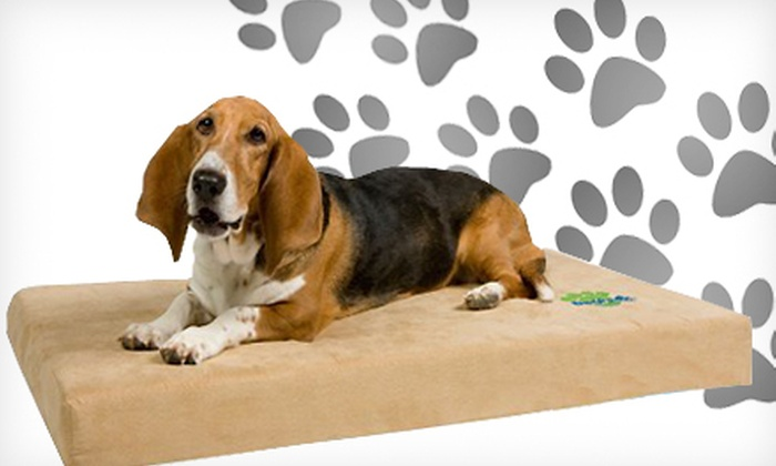Orthopedic Memory Foam Dog Bed: Small or Medium DogPedic Sleep System Memory-Foam Bed (Up to 58% Off)