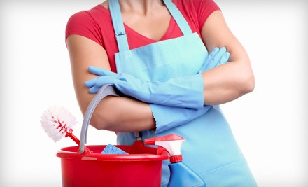 3-Hour Home Cleaning Session (a $90 value) - Amerimaids in