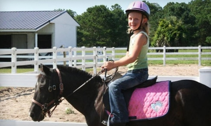 Bluff Creek Stables - Midway: $15 for Private Horseback-Riding Lesson at Bluff Creek Stables in Midway ($35 Value)