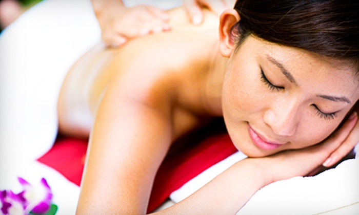 MoonDance Massage Therapy - Warfleigh: 60- or 90-Minute Holistic Massage at MoonDance Massage Therapy