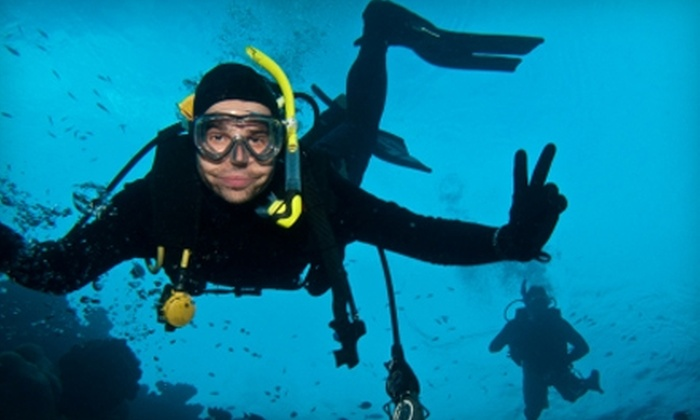 Divers West - Coeur d'Alene: $15 for an Introductory Try Scuba Diving Class at Divers West in Coeur d'Alene, Idaho ($35 Value)