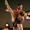 $9 for One Ticket to Dance Exposé Performance
