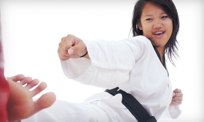 Tiger Academy Martial Arts Association - Sioux Falls: 30-, 60-, or 90-Day Martial-Arts and Fitness-Class Memberships at Tiger Academy Martial Arts Association (Up to 79% Off)