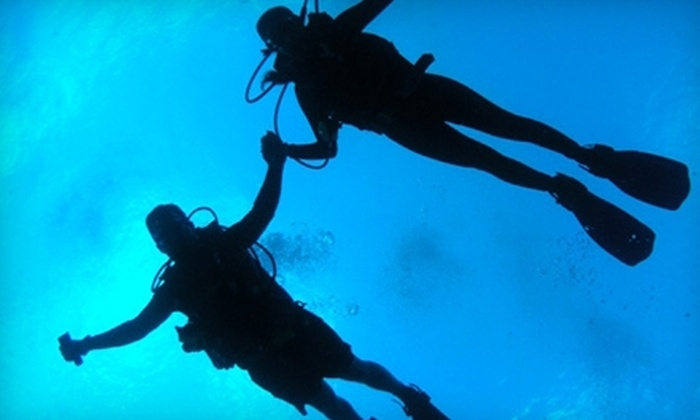 Sea Stallion Scuba Outfitters - Irvine Industrial Complex-East: $35 for a Two-Hour Diving Session at Sea Stallion Scuba Outfitters in Lake Forest ($75 Value)