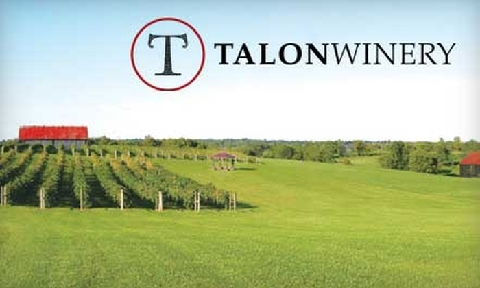 Talon Winery & Vineyards - Multiple Locations: $20 for a Wine Tasting for Four, a Bottle of Wine, and Four Souvenir Wine Glasses at Talon Winery & Vineyards (Up to $49 Value)