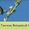 Half Off Botanical Gardens Membership