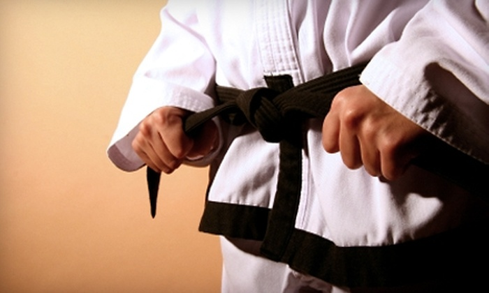 Ultima Self-Defense and Fitness LLC - Multiple Locations: $35 for an Introductory Class and One Month of Classes at Ultima Self-Defense and Fitness LLC ($138.99 Value)
