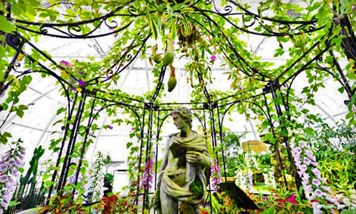 Conservatory of Flowers - Golden Gate Park: Conservatory of Flowers Individual or Family Membership Including Free Admission for a Year (Half Off)