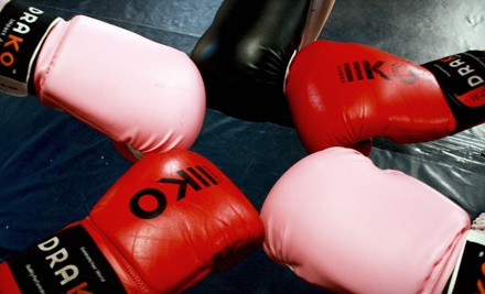 Good for 2 Months of Ladies' Thai Cardio and Pilates Training ($80 Value) - 8 Limb Muay Thai in St. John's
